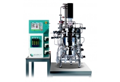 bioreactores escala piloto