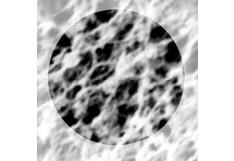 Filtros de celulosa