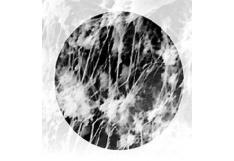 Filtros de fibra de vidrio