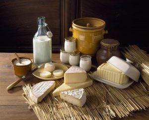 Análisis de grasas en productos lacteos por Actalia Cecalait con nuestro Oracle