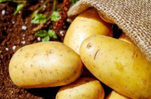 Determinación de dextrosa en patatas con el YSI 2900